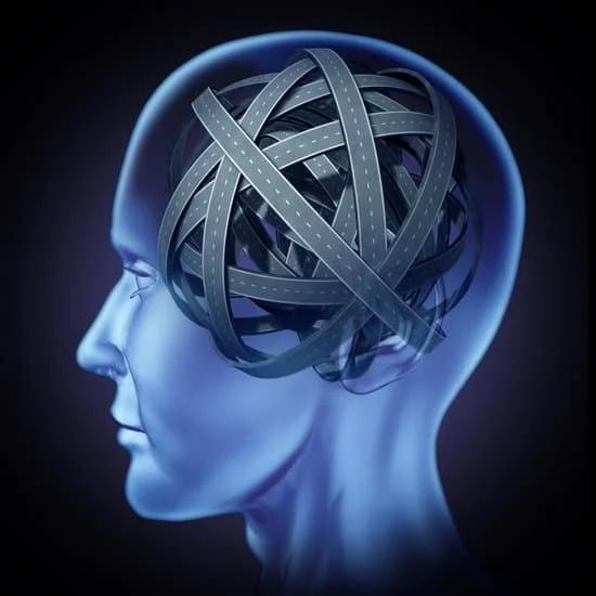 Autostrada połączeń w mózgu